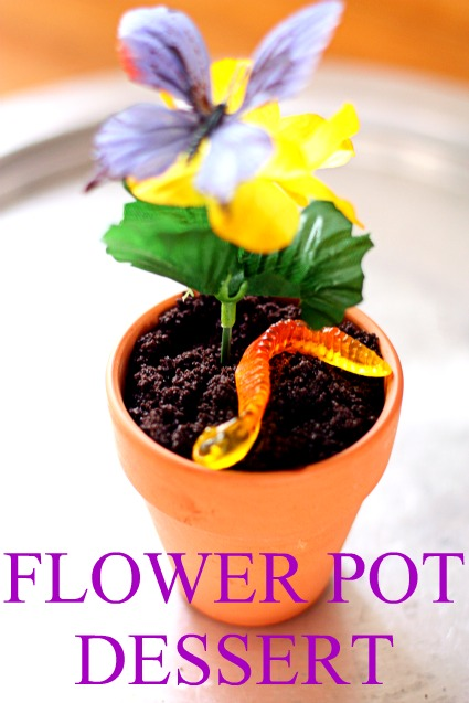 Flowers Healthy & Chocolate Pudding Flower Pot Dessert - Flowers Healthy