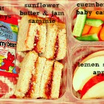 Kiddie Lunch Box Ideas